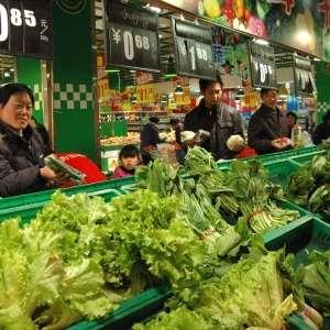 山东省蔬菜价格继续小幅下跌